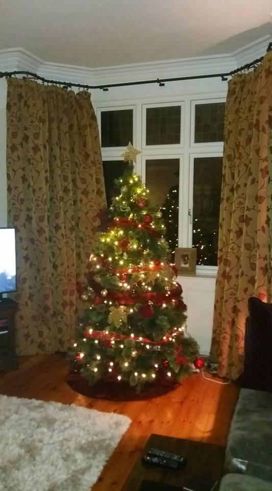 Becca Christmas Tree 2017